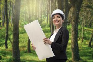mercado de trabalho para engenheiro florestal